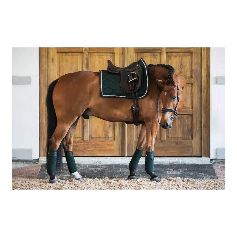 Tapis Dressage Ps Of Sweden Tapis Vert Emeraude Saddle Pad Emerald
