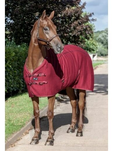 Produits En Promotion Soldes Sur Horsedressagestore 2