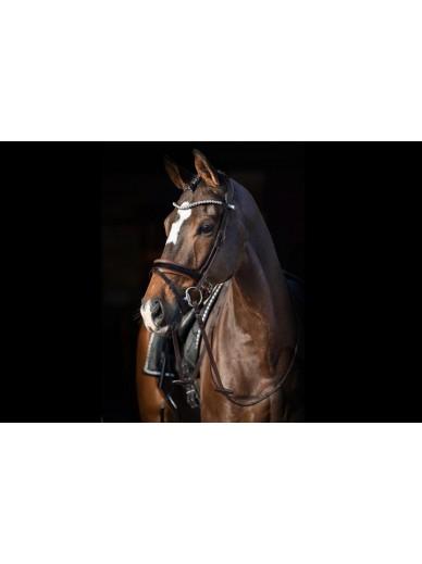 Ps of Sweden - bridon Grand prix brun/blanc