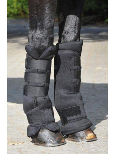 "BUSSE - Stable boots ""protect"""